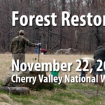 Cherry Creek Forest Restoration
